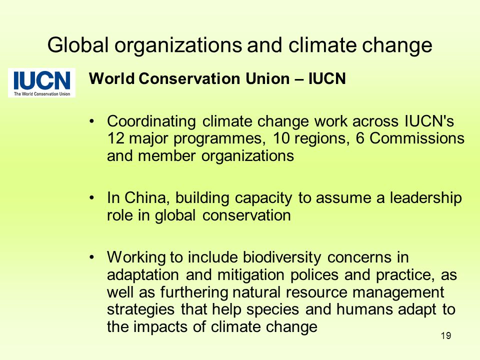 Global organizations and climate change
