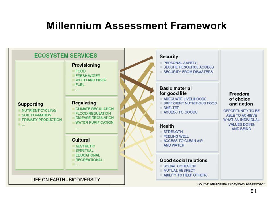 Millennium Assessment Framework