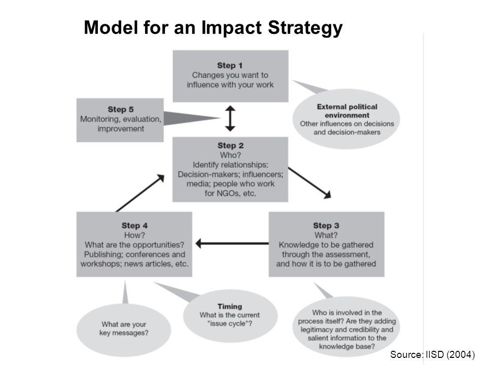 Model for an Impact Strategy