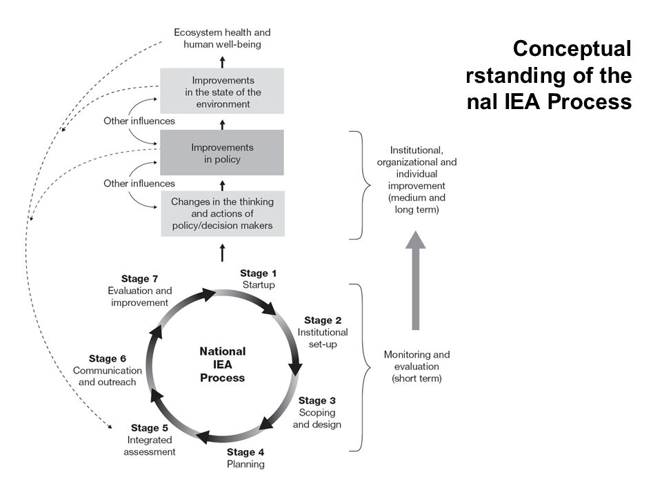 Conceptual Understanding of the National IEA Process