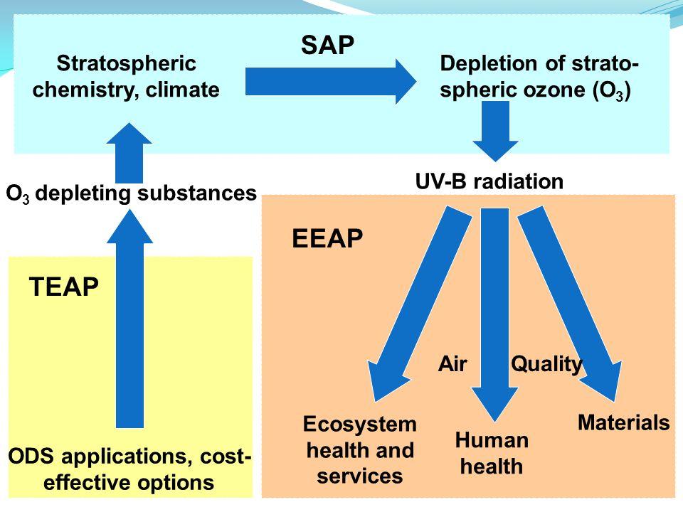 SAP EEAP TEAP Stratospheric chemistry, climate