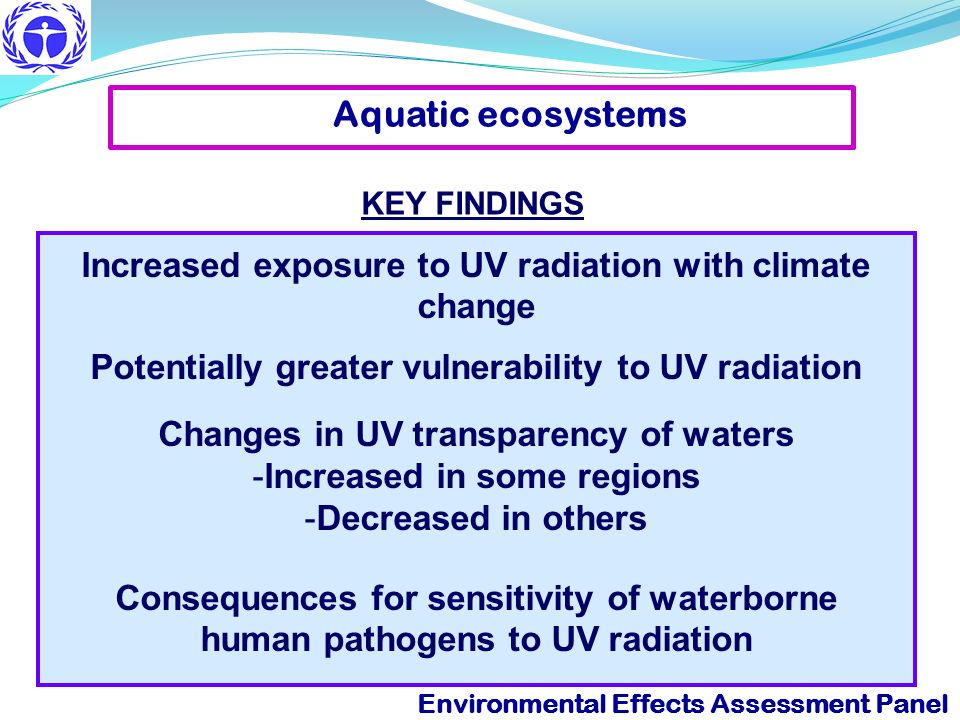 Aquatic ecosystems KEY FINDINGS. Increased exposure to UV radiation with climate change. Potentially greater vulnerability to UV radiation.