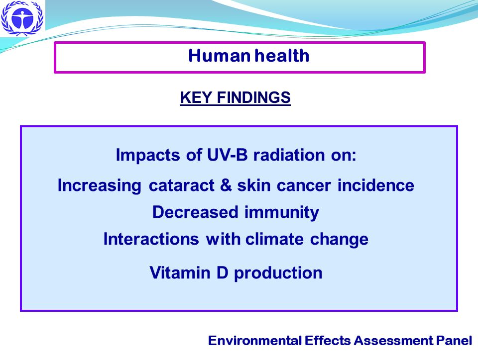 Human health Impacts of UV-B radiation on: