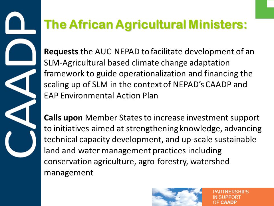 The African Agricultural Ministers: