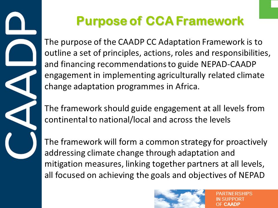 Purpose of CCA Framework