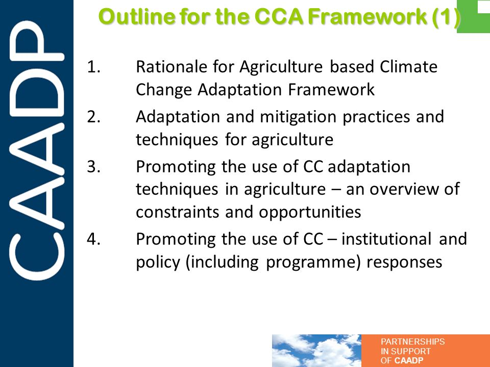 Outline for the CCA Framework (1)