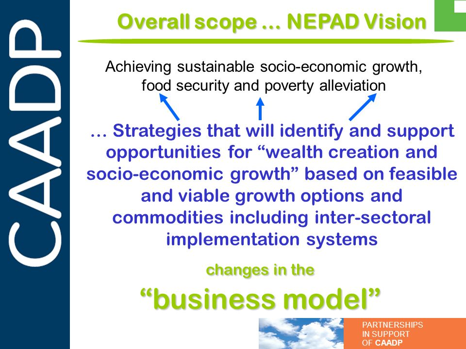 Overall scope … NEPAD Vision