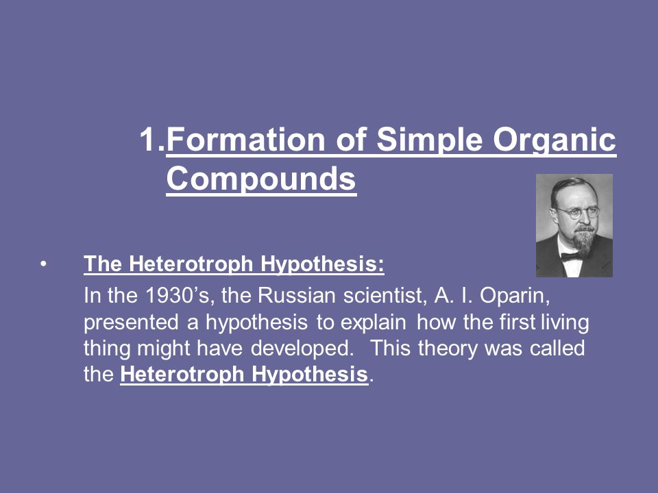 heterotroph hypothesis Special needs support to develop, extend and complexify our understanding hypothesis heterotroph definition she learned latin grammar rather, as we mentioned in.