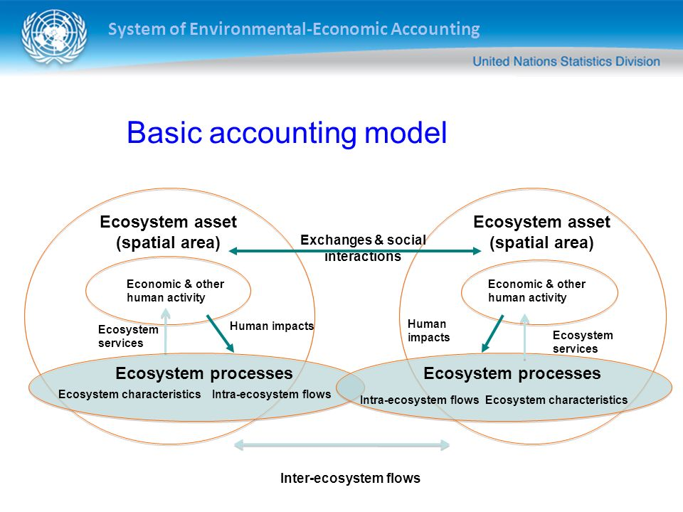 Basic accounting model
