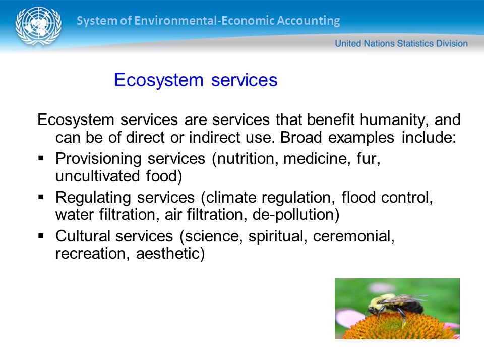Ecosystem services Ecosystem services are services that benefit humanity, and can be of direct or indirect use. Broad examples include: