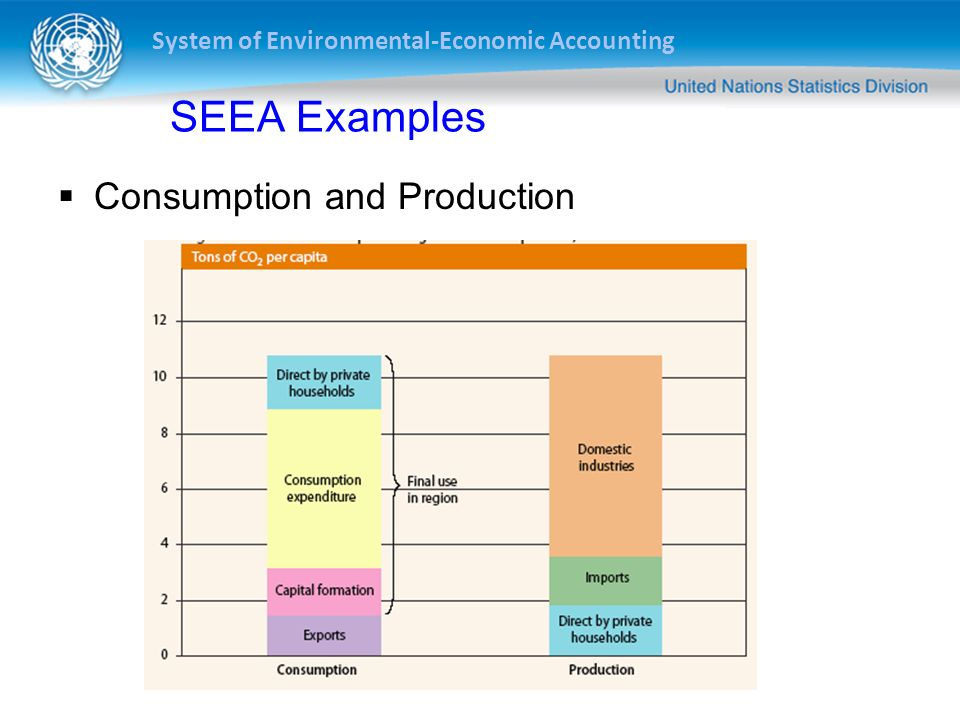 SEEA Examples Consumption and Production