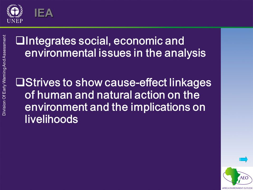 IEA Integrates social, economic and environmental issues in the analysis.