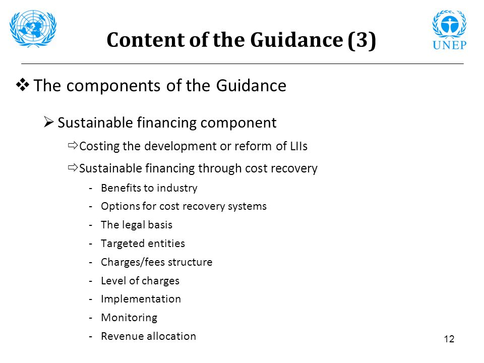 Content of the Guidance (3)