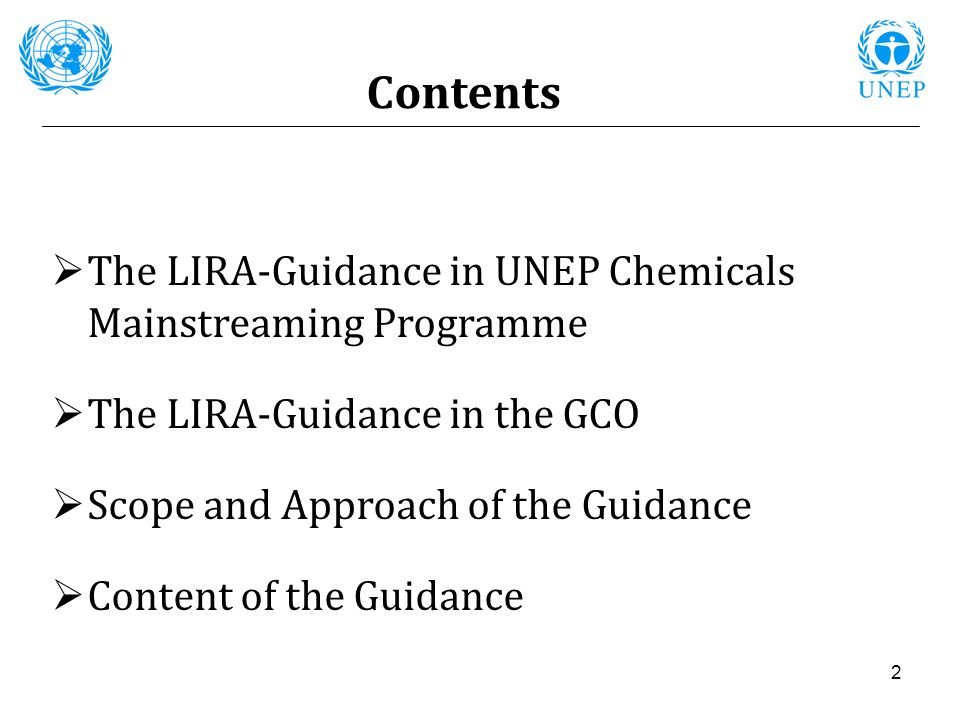 Contents The LIRA-Guidance in UNEP Chemicals Mainstreaming Programme