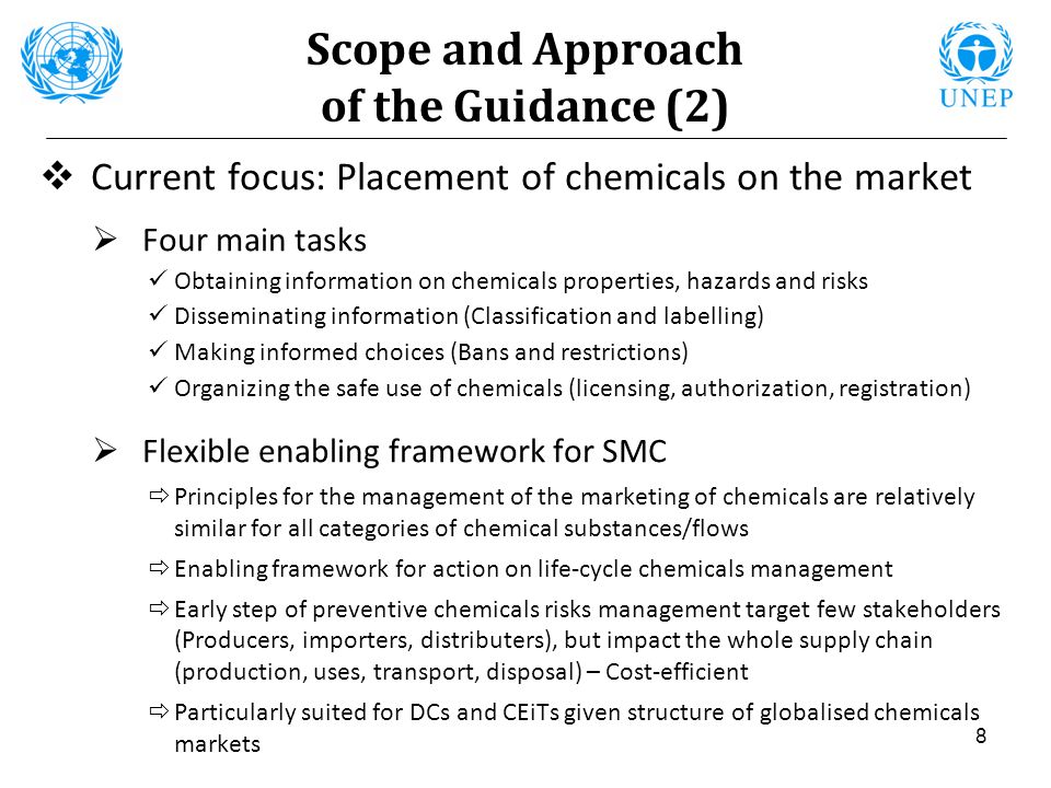 Scope and Approach of the Guidance (2)