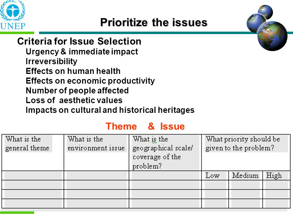 Prioritize the issues Criteria for Issue Selection Theme & Issue