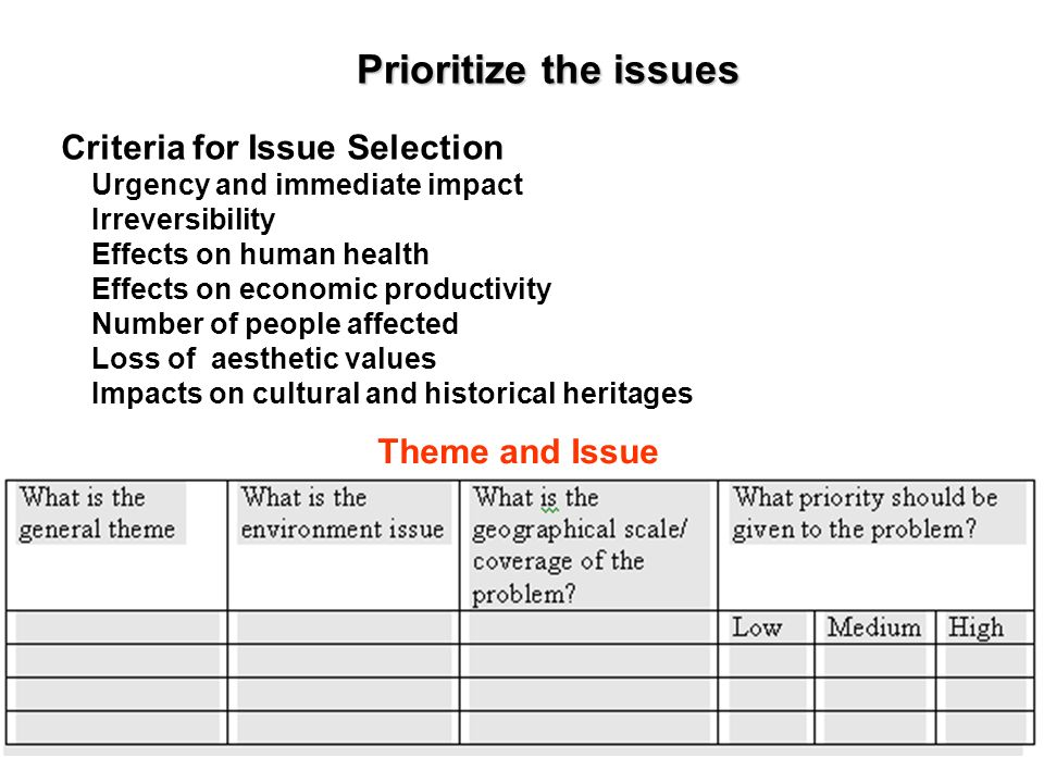 Prioritize the issues Criteria for Issue Selection Theme and Issue