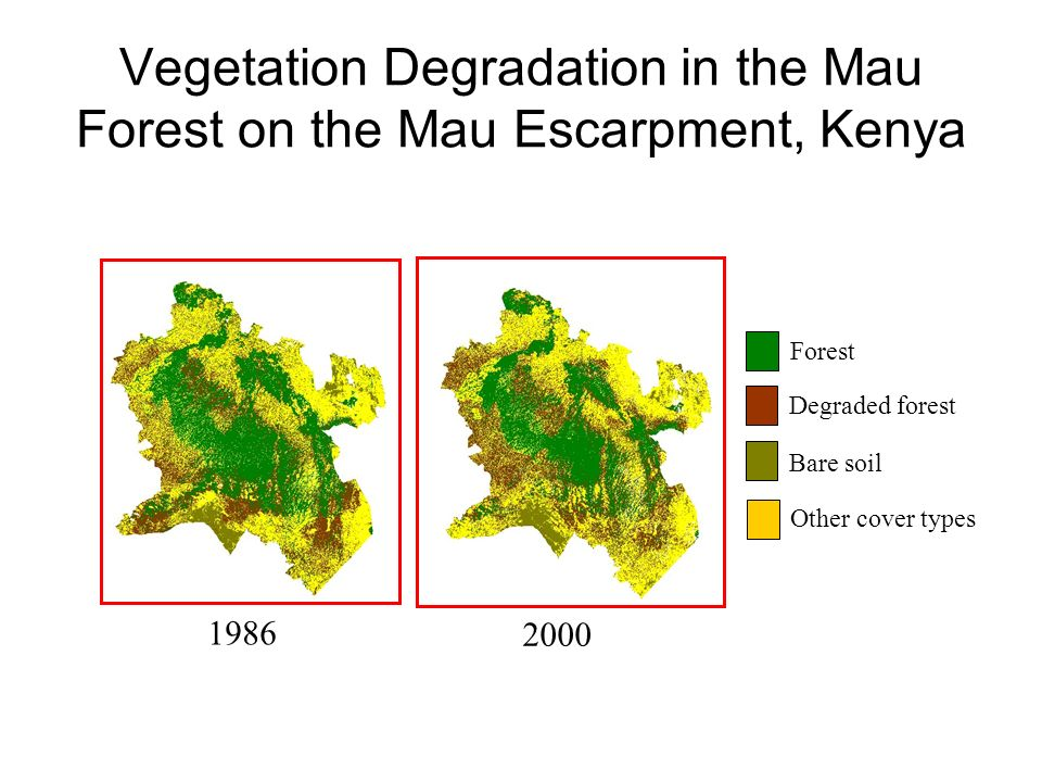 Vegetation Degradation in the Mau Forest on the Mau Escarpment, Kenya