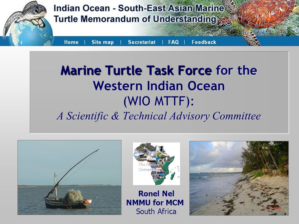 Marine Turtle Task Force for the Western Indian Ocean (WIO MTTF): A Scientific & Technical Advisory Committee
