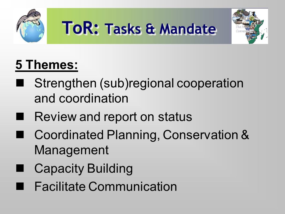 ToR: Tasks & Mandate 5 Themes: