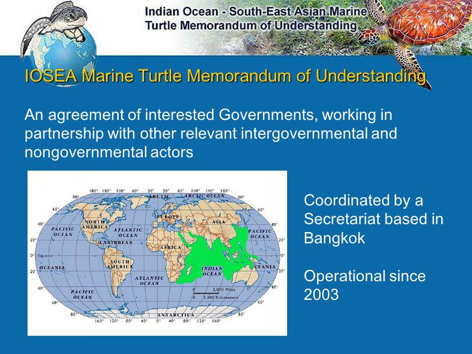 IOSEA Marine Turtle Memorandum of Understanding