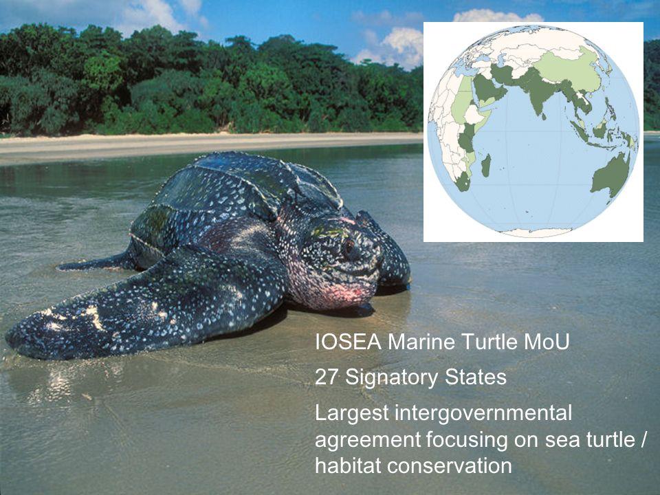 IOSEA Marine Turtle MoU
