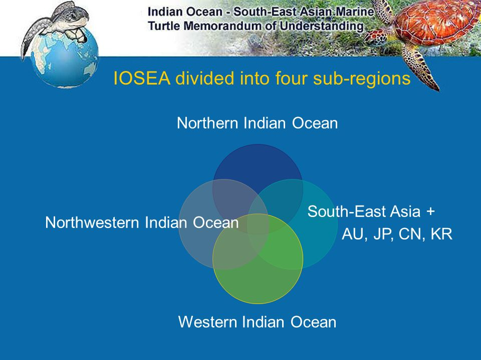 Northwestern Indian Ocean
