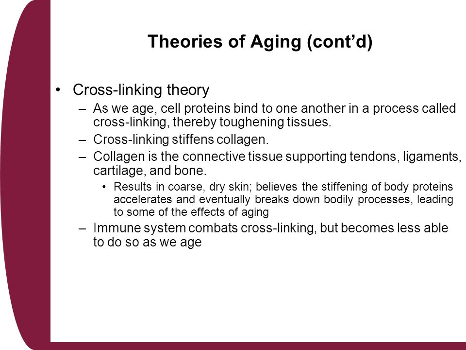 2 theories of ageing Explain two theories of ageing the first theory of ageing is disengagement this is the withdrawal of involvement according to henry (1961) and cumming.