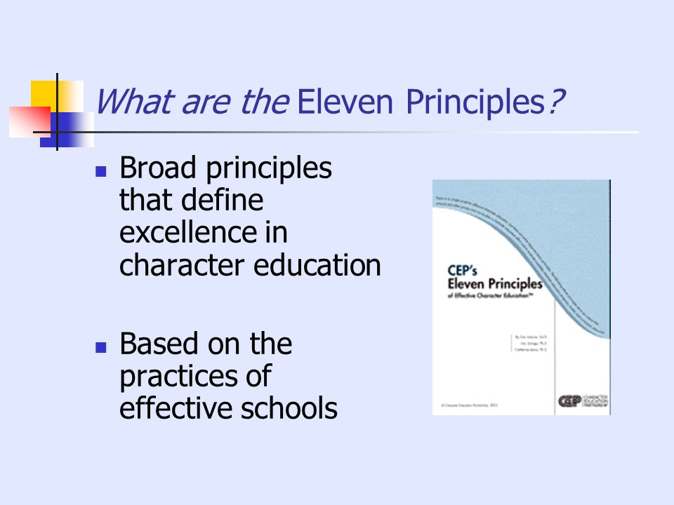 What are the Eleven Principles