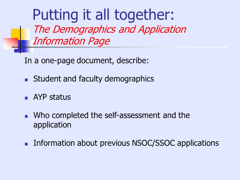 Putting it all together: The Demographics and Application Information Page