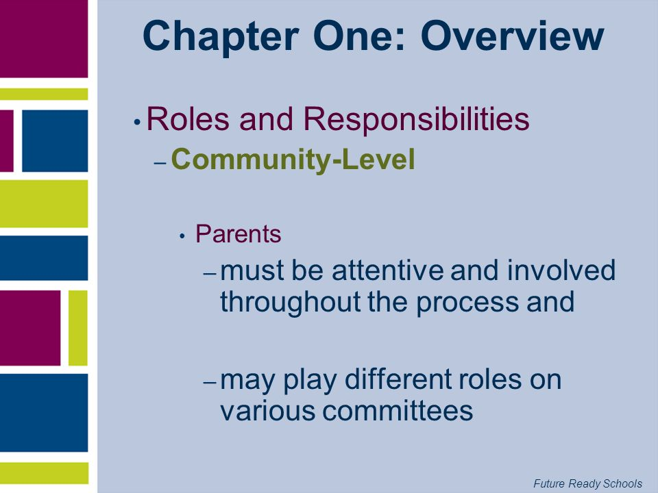 Chapter One: Overview Roles and Responsibilities Community-Level