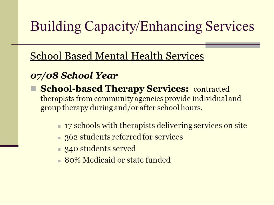 Building Capacity/Enhancing Services