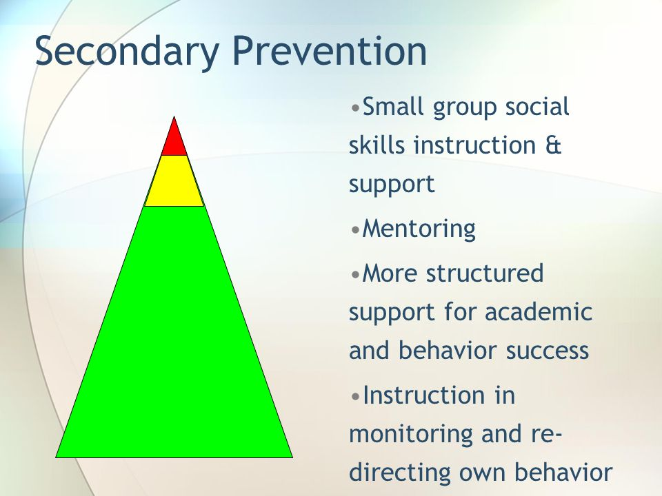 Secondary Prevention Small group social skills instruction & support