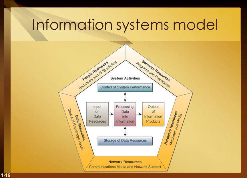 Information systems model
