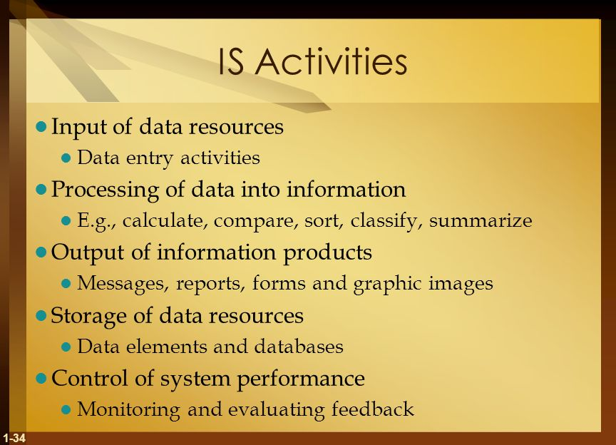 IS Activities Input of data resources
