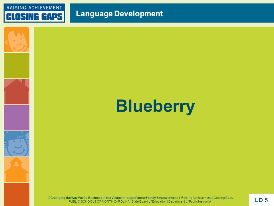 Blueberry Language Development LD 5 LD 5