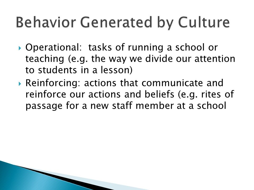 Behavior Generated by Culture