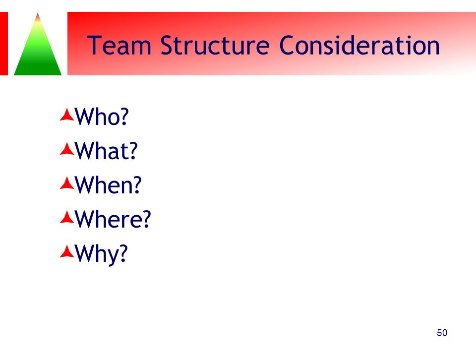 Team Structure Consideration