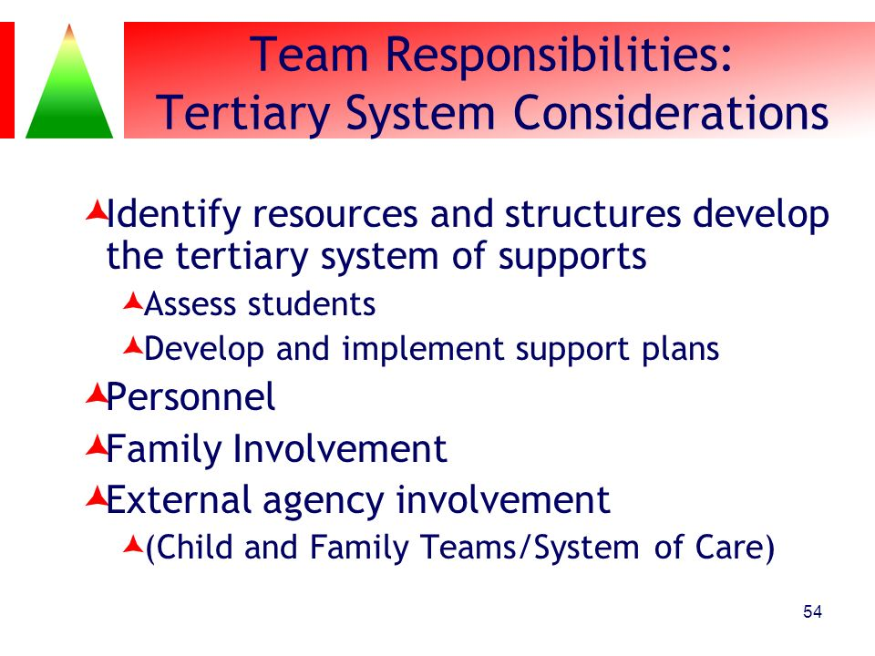 Team Responsibilities: Tertiary System Considerations