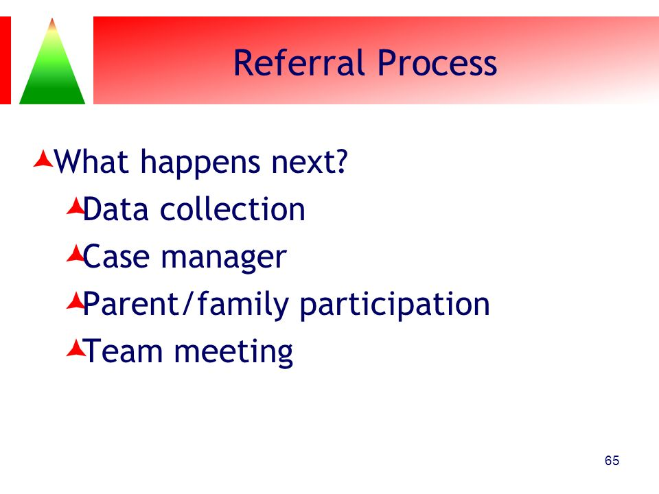 Referral Process What happens next Data collection Case manager