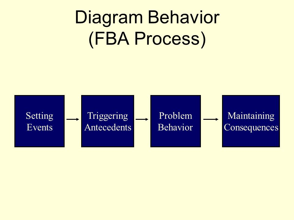 Diagram Behavior (FBA Process)