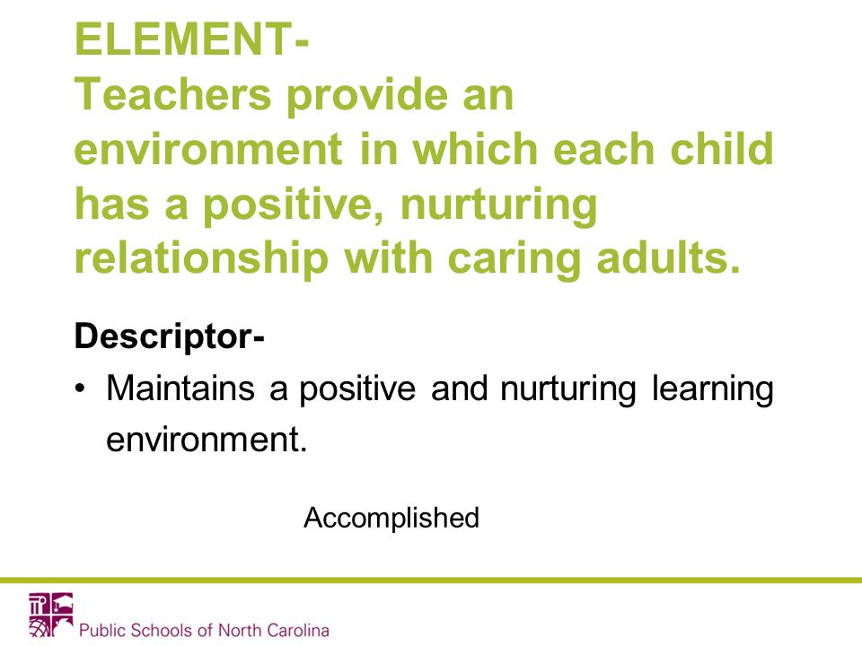 ELEMENT- Teachers provide an environment in which each child has a positive, nurturing relationship with caring adults.