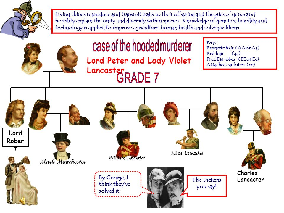 case of the hooded murderer
