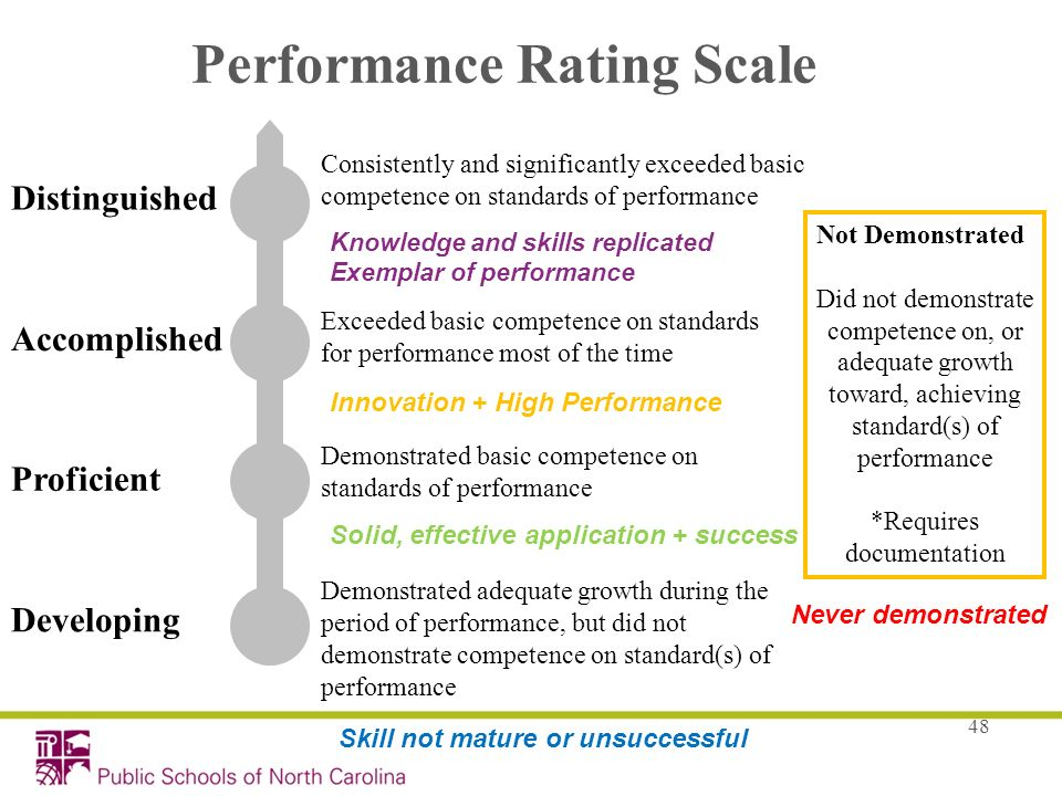 Performance Rating Scale