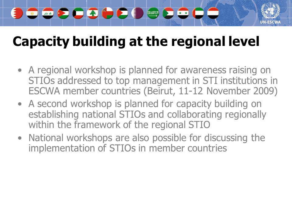 Capacity building at the regional level