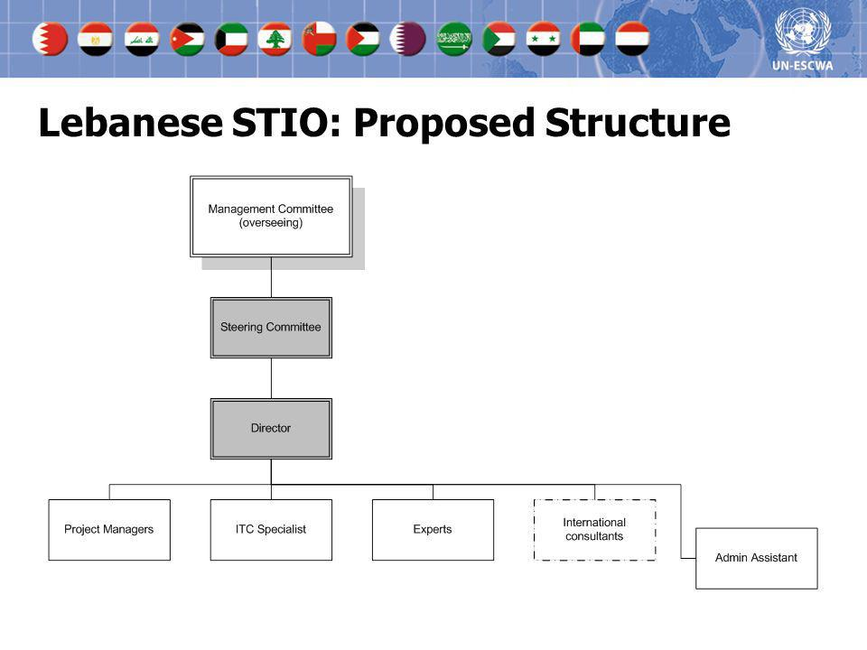 Lebanese STIO: Proposed Structure