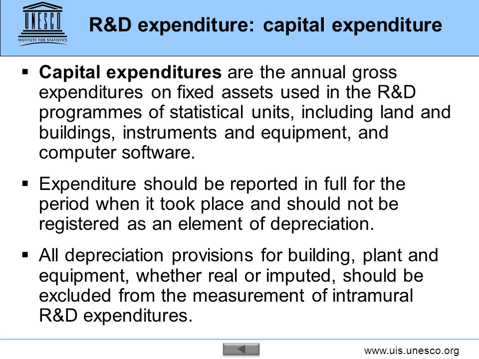 R&D expenditure: capital expenditure
