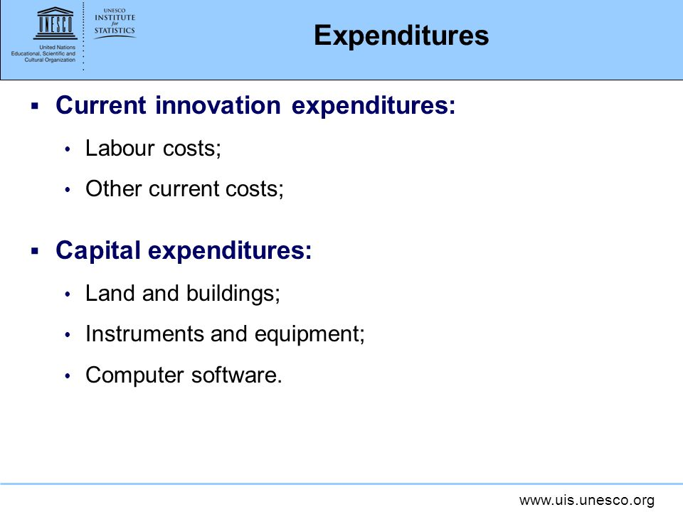 Expenditures Current innovation expenditures: Capital expenditures: