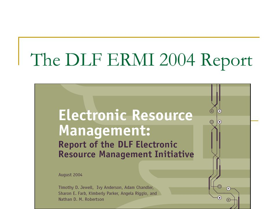 The DLF ERMI 2004 Report