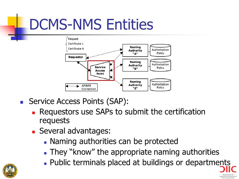 DCMS-NMS Entities Service Access Points (SAP):